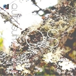 Quiet Sun 「Flicker and Fade EP」