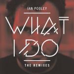 Ian Pooley 「What I Do Remixes」