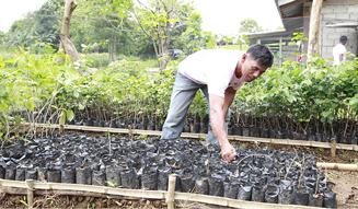 モア・トゥリーズが進めるフィリピン・キリノ州でのチャレンジ|more trees 12