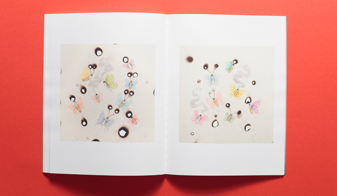 オーレル・シュミット & フランツ・ライト『Reveries of a Lost Life Mask』