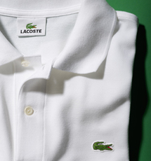 LACOSTE|ラコステ 11
