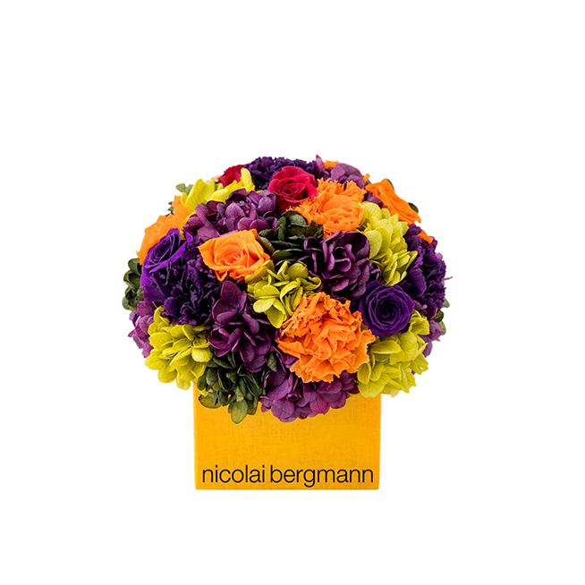 nicolai-bergmann_009