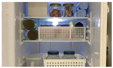 """【マネー・仕事】会社、家の中、身の回りを""""整理""""して、「時短・節約」の一挙両得。冷蔵庫整理はSNSでも注目(2017年7月号)"""