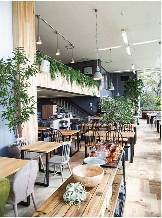 壁やテーブルに六甲山の木を使用したインテリア