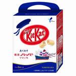 日本必買伴手禮KitKat巧克力又推新款 聯名橫濱老牌餅乾