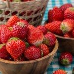 日本產草莓吃到飽只要2019日幣! CP值超高SWEETS PARADISE 給妳滿滿草莓 不吃對不起自己