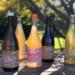 ホワイティッシュ 2020 & ソニーボーイ 2020 & パッシュ&ポップ 2020 & スパークリング 2020 & リトル・レッド 2020 / アリーズ・ナチュラル・ワイン