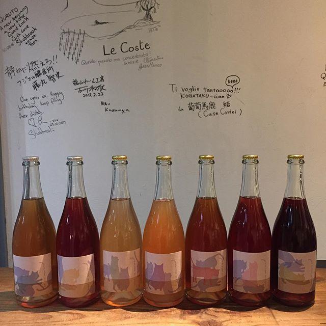"""Takuro Koga on Instagram: """"新入荷ワインのご紹介! 山形から遠く離れた熊本に、今年も到着です。 去年、全種類を大人買いした猫好きが続出した、 ファットリア アルフィオーレのNECOシリーズ。 2017ヴィンテージが7種類入荷しました!! 目黒さんのワイナリーは今年宮城にできますので、…"""" (9000)"""