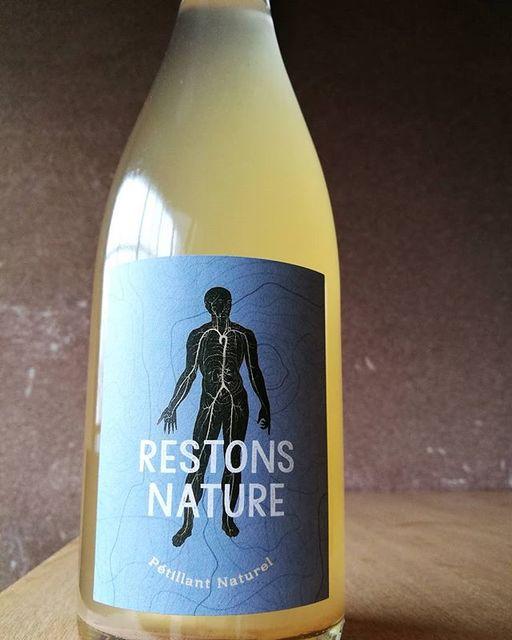 """酒屋 彌三郎 on Instagram: """"血管のように体の隅々まで巡り染み渡る液体をイメージしたようなエチケットの微泡ワイン。 じんわりと広がる穏やかで優しい味わいはまるでお出汁のよう。 和食に合わない訳がないですね! レストン・ナチュール・ペティアン・ナチュレル 2016 クンプフ・エ・メイエー フランス /…"""" (9286)"""