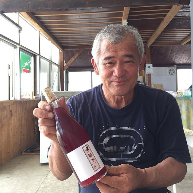 """Takuro Koga on Instagram: """"午前中に田原坂方面へ。 キュヴェ植木の原料のキャンベル生産者、 前田一宏さんと今年の打ち合わせに行って来ました。 すっかり遅くなったけど、 キュヴェ植木2017も手渡せて一区切り。 さーて、2018年ヴィンテージが始動します。 なんとか豊作で1t、お願いしますっ!!…"""" (10552)"""