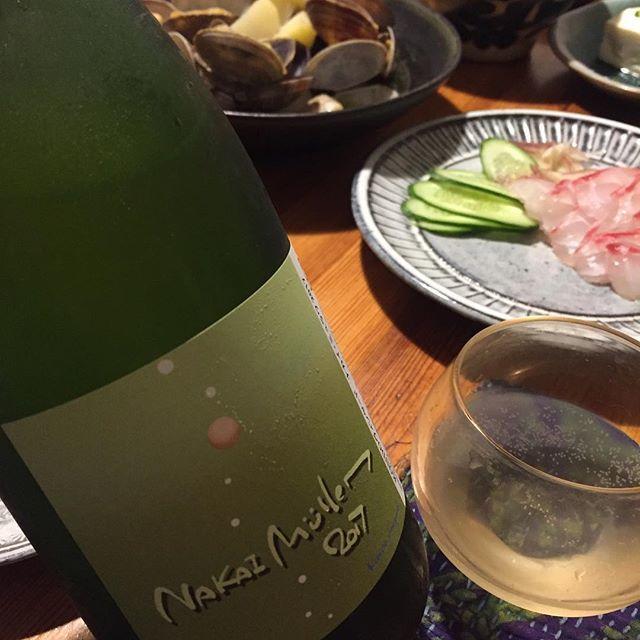 "Takuro Koga on Instagram: ""いつかの晩御飯より。 真鯛のお刺身と、めちゃ大きな浅利の酒蒸し。 合わせてみたのは、 KONDOヴィンヤードのナカイ ミュラワ2017。 余市の中井農園さんのミュラーに、 近藤さんのモセウシ農場のオーセロワをプラスした泡。 スゴく美味しいのですが、…"" (10656)"