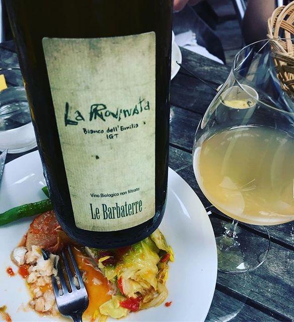 "winy on Instagram: ""La Rovinata NV / Le Barbaterre (Massimiliano Bedogni) - Emilia Romagna (Garganega, Sauvignon Blanc, Pinot Nero) ラ・ロヴィナータ NV /…"" (10674)"