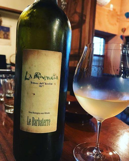 "winy on Instagram: ""La Rovinata NV / Le Barbaterre (Massimiliano Bedogni) - Emilia Romagna (Garganega, Sauvignon Blanc, Pinot Nero) ラ・ロヴィナータ NV /…"" (10715)"
