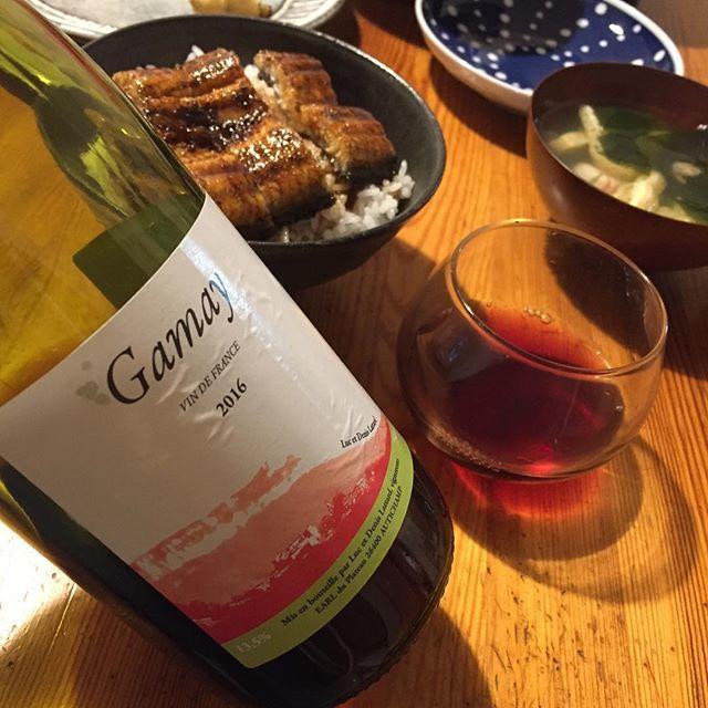 Takuro KogaさんはInstagramを利用しています:「再入荷しました! 先日ご紹介したラターのガメイ2016、 2,380円+税で再入荷しましたー! カツオにバッチリ合った、珍しいローヌのガメイ。 抜栓2日目はウナギと合わせたのでした。 ウナギだとちょっとワインが負けちゃうかなー。 カツオとの方が相性が良かったです。…」 (11103)