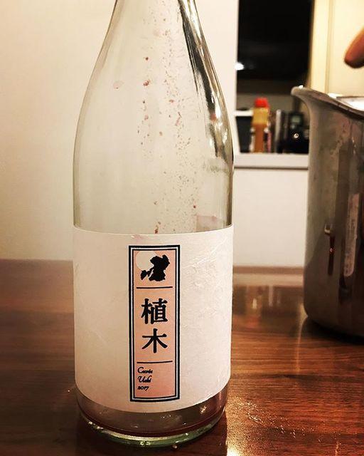 "winy.tokyo on Instagram: ""Cuvée Ueki 2017 / Quruto (Takuro Koga) x Kumamoto Wine - #Kumamoto, #Japan (#Campbell) キュヴェ植木 2017 / クルト(古賀択郎)x 熊本ワイン - #日本、#熊本(#キャンベル)…"" (13409)"