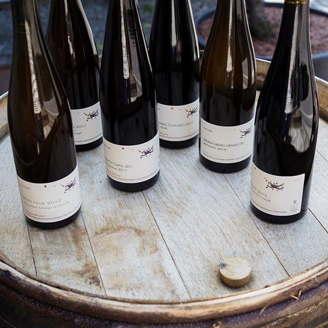"""tomohiro sakata on Instagram: """". 【ワインガイド更新!】 . フランス アルザスのドメーヌ・ジュリアン・メイエーから全6アイテムの入荷です。 いつも優しく体に沁みわたる美味しいワインを届けてくれるジュリアン・メイエー。 今回白はオレンジ系4アイテムと赤はピノノワールが2アイテムです。 .…"""" (15166)"""