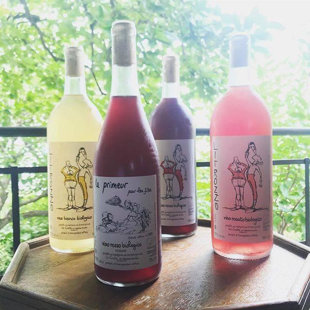 "HUMAN NATURE on Instagram: ""#lecoste のプリムールとリトロッツォが入荷しています!涼しげで雨が多かった2018をキンキンに冷やして喉で!そして魂へ! 購入はプロフィールのリンクからどうぞ。 #acidpunk #一気 #wine #vino #naturalwine #vinonaturale…"" (17509)"