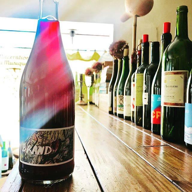 "nadja1963 on Instagram: ""ブランド ブロス。ドイツのファルツの若きブランド兄弟。テクノ好きの弟。 スルスル。ヌーヴォー。ポルトギーザーに少しカベルネフラン。台風一過今宵はナジャ、1955開店です☆ #brandbros #winebarnadja  #ナチュラルワイン  #塚口ワイン #阪急塚口 #塚口…"" (17552)"