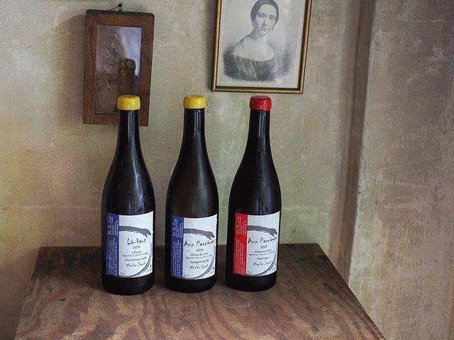 """tomohiro sakata on Instagram: """". . 【ワインガイド更新!】 . フランス ジュラ、ガヌヴァの蔵に勤めながら自身のワイン造りを進めるニコラ・ジャコブの新着です! 彼の本拠地はガヌヴァの蔵から北に30分ほどのエトワール。実力は折り紙付きですが、生産量がとても少なく入荷も少量ずつですのでお早めにどうぞ。 .…"""" (17720)"""
