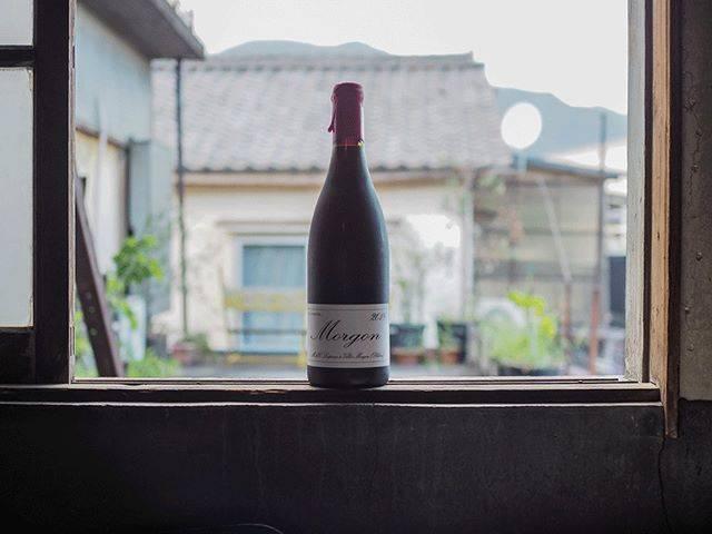 """tomohiro sakata on Instagram: """". 【ワインガイド更新!】 . フランス ボジョレーよりマルセル・ラピエールのモルゴン 2018が到着しました。 . 天候に恵まれた2018年、ブドウは理想的な状態で収穫することが出来たそうです。…"""" (17879)"""