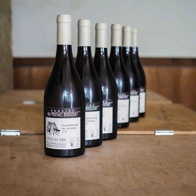 """tomohiro sakata on Instagram: """". 【ワインガイド更新!】 . フランス ジュラよりマルヌ・ブランシュの新着です! 先日リリースの買いブドウのアテナ・ロケット 2017も大好評でしたね。今回入荷は全て自身のブドウのドメーヌものです。どれも澄んだ優しい味わいで癒されます。再入荷も合わせてぜひお試しください。 .…"""" (18152)"""