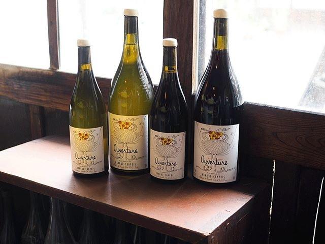 "tomohiro sakata on Instagram: "". 【ワインガイド更新!】 . フランス ブルゴーニュからアルノー・シャピーの新着です。 2015年までは亜硫酸をごく少量添加しておりましたが、2016年からは無添加となりとてもピュアで落ち着いた印象のやさしいワインの造り手です。…"" (18555)"