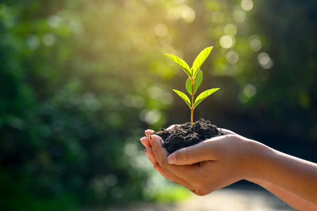 サスティナブルとは?企業が持続可能性に取り組むメリットをご紹介