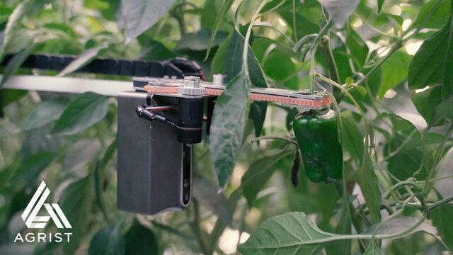 農業用収穫ロボットを開発するAGRIST、VC・地域金融機関など6社から資金調達を実施