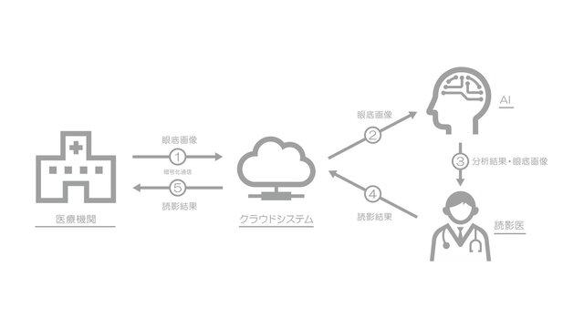 シーメンスヘルスケア、医療DXの成長推進を目指し眼科画像AI診断支援サービスを提供する自治医科大学発ベンチャー・DeepEyeVisionと提携開始