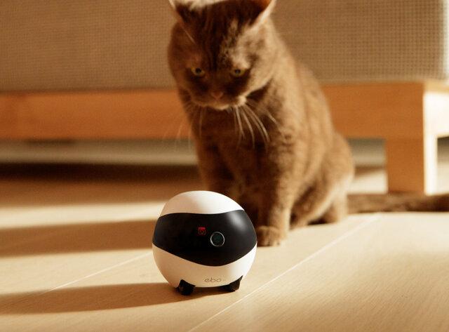 自走式見守りロボット「EBO SE(イーボ エスイー)」が販売開始