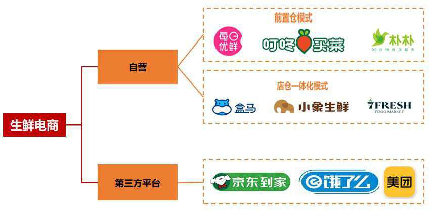 生鮮ECの自社経営と第三者プラットフォーム提携(出典:天風証券研究所の証券レポート)