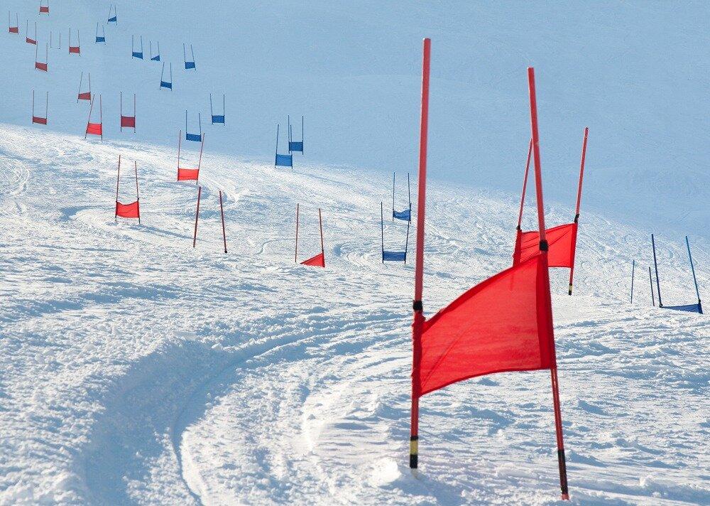 赤と青のゲートが並んだコース