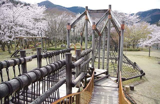 子どもたちに大人気!次の休日は大野ダム公園で遊んでみませんか?