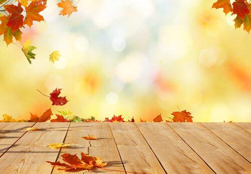 鳥栖の秋・冬おすすめイベント12選