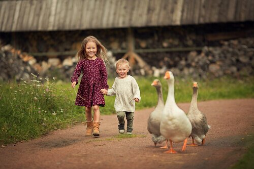 子供と楽しめる関東の牧場をチェック!おすすめグルメや体験メニューとは?