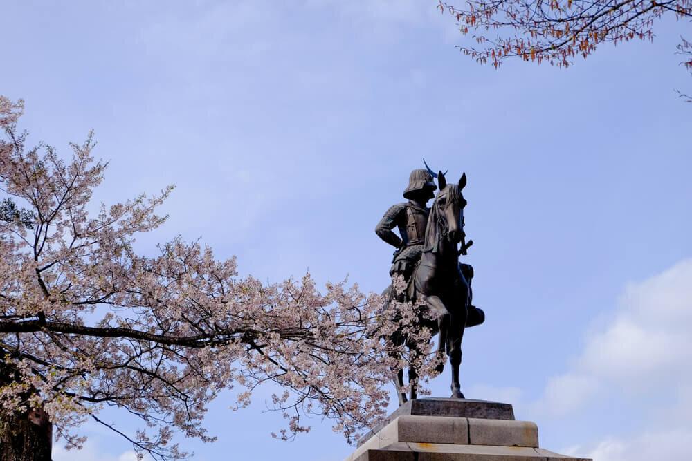 伊達政宗騎馬像と桜