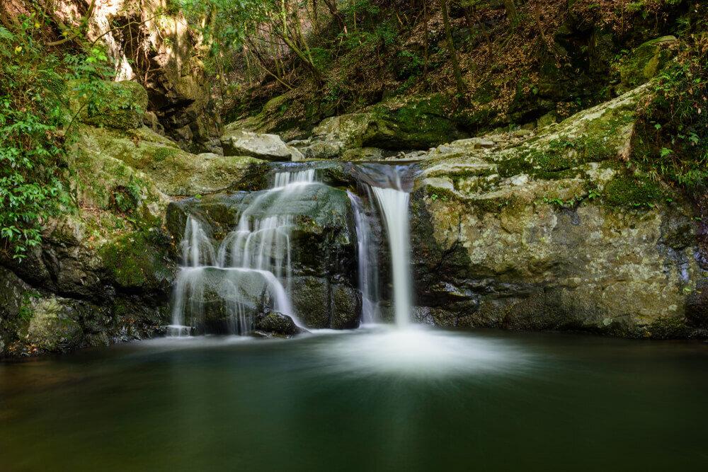 苔の生えた犬鳴山の滝