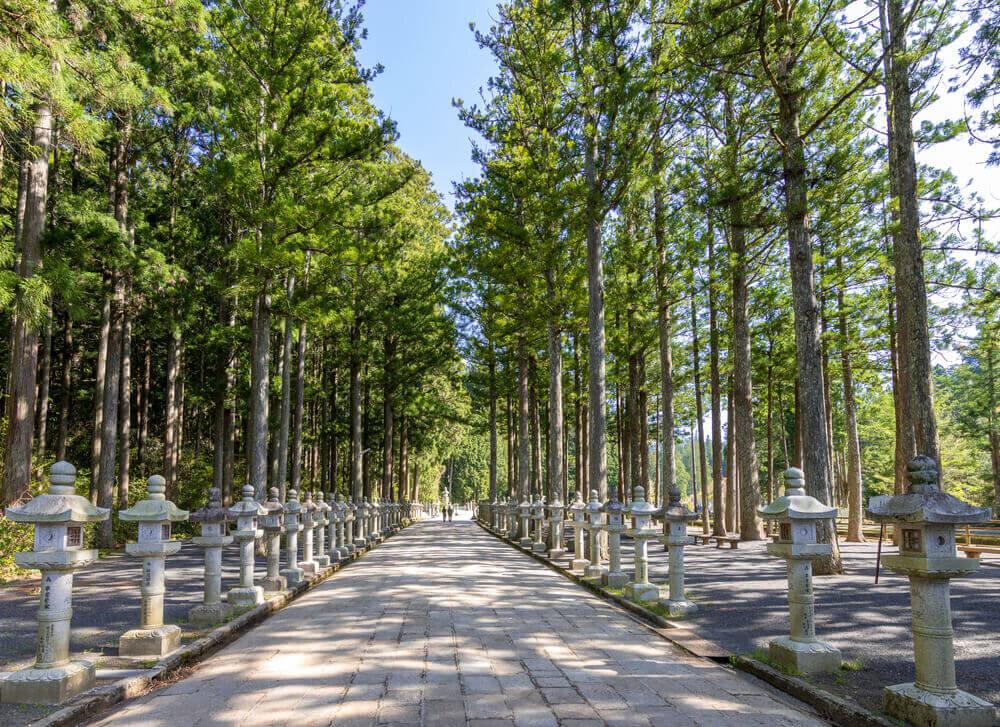 木々が立ち並ぶ奥之院