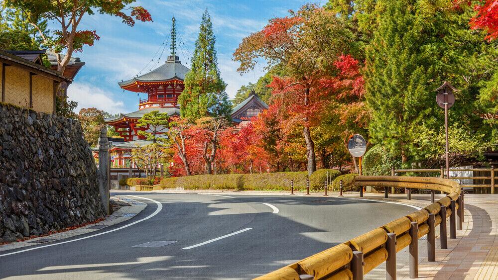 木々が紅葉している高野山