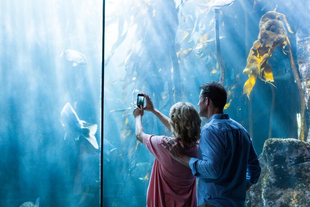 水族館でデートするカップル