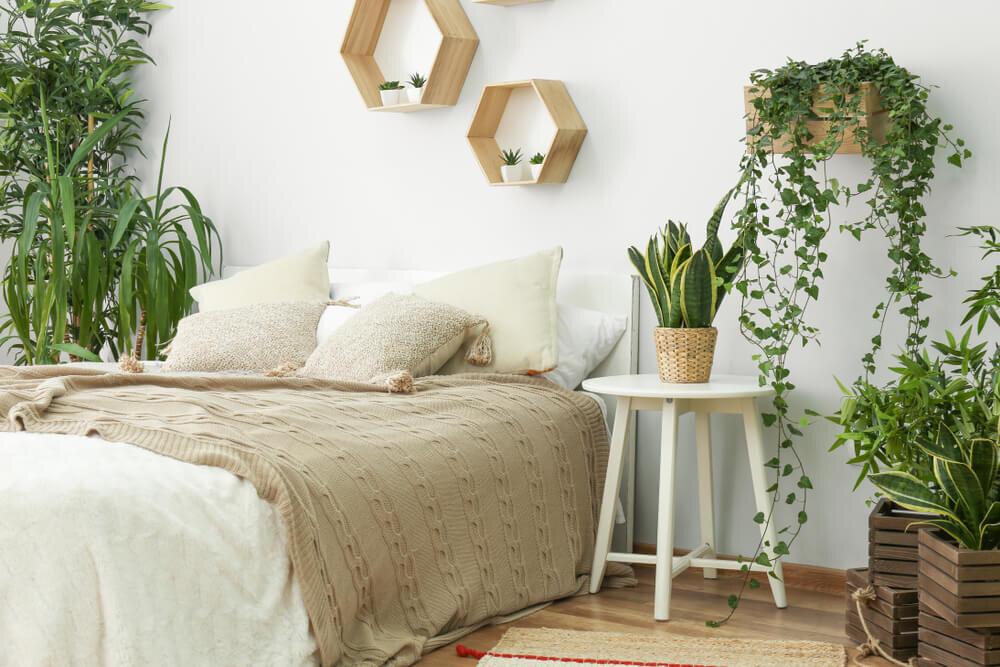 観葉植物に囲まれた寝室