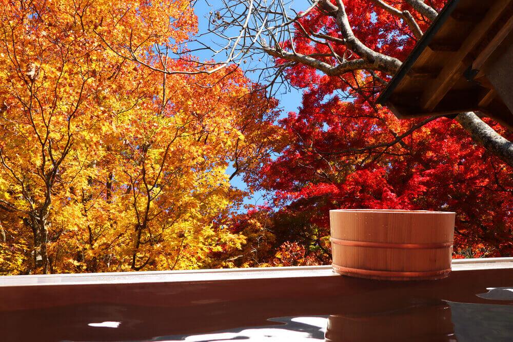 秋の紅葉が美しい温泉