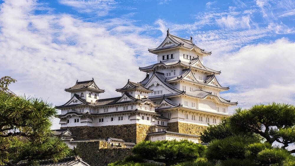 松の木と姫路城