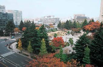 勾当台公園周辺|仙台市 緑の名所 100選