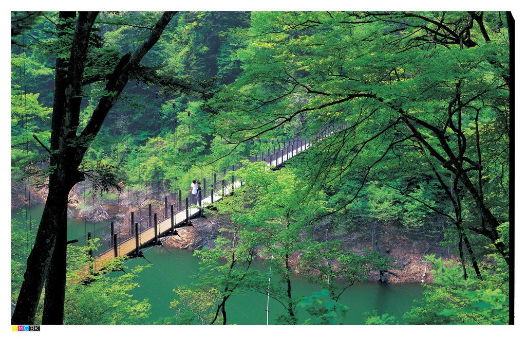 回顧の吊橋・回顧の滝|観光情報検索 | とちぎ旅ネット