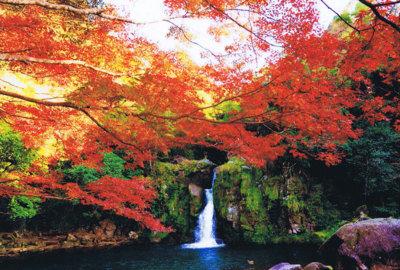 観音滝公園の紅葉情報 |ウォーカープラス