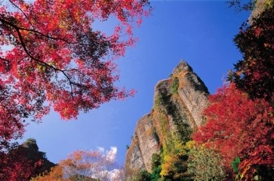 乳待坊公園の紅葉情報 |ウォーカープラス