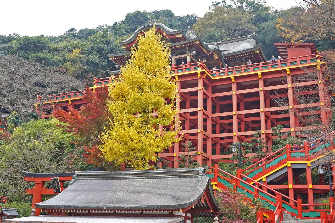祐徳稲荷神社の紅葉【鹿島市公式観光サイト】かしまいろ