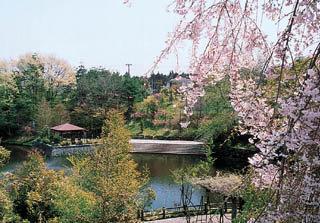 貝ヶ森中央公園|仙台市 緑の名所 100選
