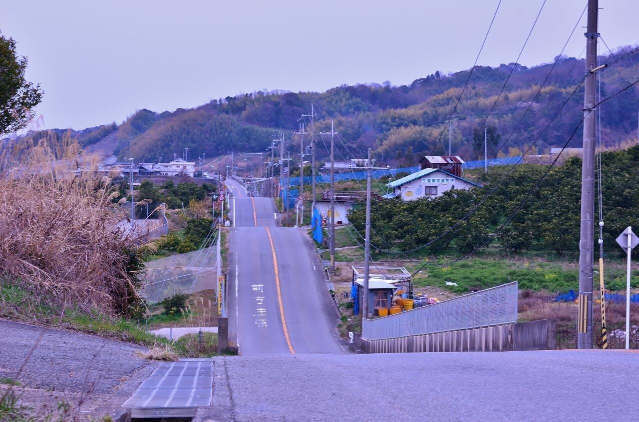 紀ノ川広域農道 ジェットコースター道|はっけん 穴場和歌山 ゆるくて、おもしろい